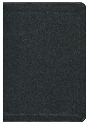 KJV New Cambridge Paragraph Bible Personal Size, Calfskin, black  -     Edited By: David Norton     By: David Norton