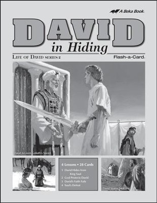 Extra David in Hiding Lesson Guide   -