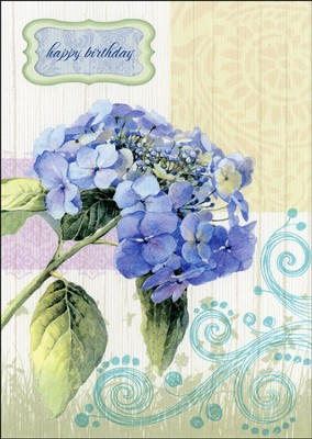 Floral Rapture Birthday Cards, Box of 12  -