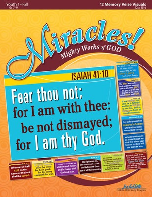 Miracles: Mighty Works of God Youth 1 (Grades 7-9) Memory Verse Visuals  -