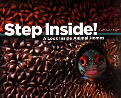 Step Inside! A Look Inside Animal Homes  -     By: Catherine Ham