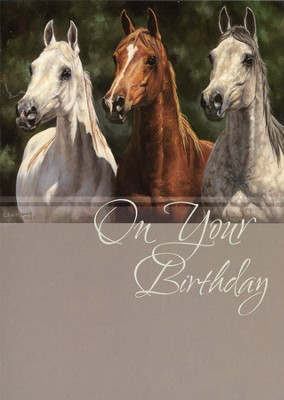 In All Your Ways Birthday Cards, Box of 12  -