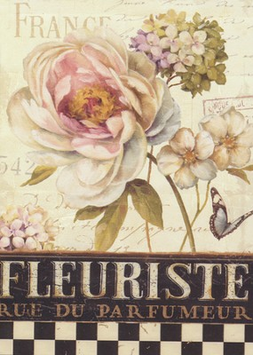 Marche De Fleurs, Boxed Note Cards  -     By: Lisa Audit