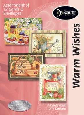 Warm Wishes Encouragement Cards, KJV, Box of 12  -