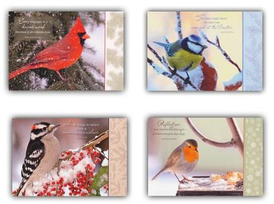 Birds Of A Feather Christmas Cards, Box of 12  -