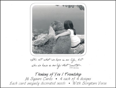 Friendship, Thinking of You Cards, Box of 16  -     By: Chrissy Ogden Marsh