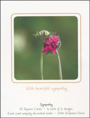 Sympathy Florals Cards, Box of 16  -     By: Donna Fuller