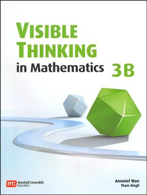 Visible Thinking in Mathematics 3B   -