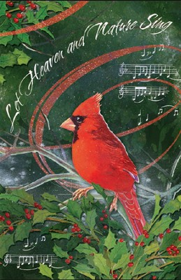 Let Heaven and Nature Sing, 20 Cards   -     By: Lynnae Washburn