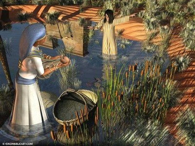 Moses in the bulrushes  [Download] -     By: Eikon Bible Art