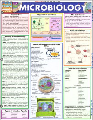 Microbiology Chart   -     By: Homeschool