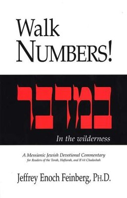 Walk Numbers, Softcover   -     By: Jeffrey Enoch Feinberg