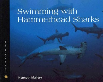 Swimming with Hammerhead Sharks  -