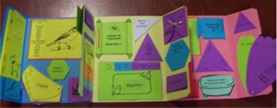 Exploring Creation with Zoology 3: Land Animals of the 6th Day Lessons 1-6 Lapbook (Assembled)  -     By: Cyndi Kinney