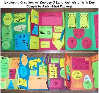 Exploring Creation with Zoology 3: Land Animals of the 6th Day Lessons 1-14 Lapbook Package (Assembled)  -     By: Cyndi Kinney