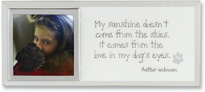 Love in My Dogs Eyes Photo Mirror Plaque  -