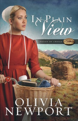 In Plain View, Valley of Choice Series #2   -     By: Olivia Newport