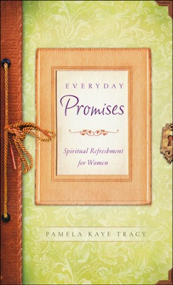 Everyday Promises  -     By: Pamela Tracy