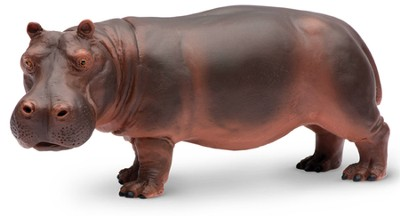 Wild Safari Jungle: Hippo Adult   -