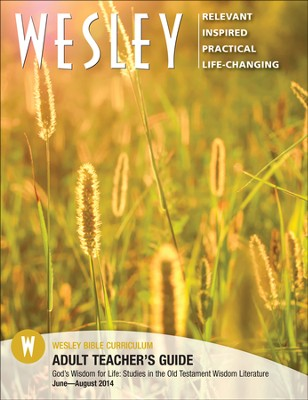 Wesley Adult Bible Teacher's Guide, Summer 2014 - Slightly Imperfect  -