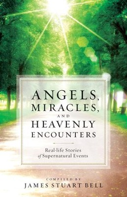 Angels, Miracles, and Heavenly Encounters: Real-Life Stories of Supernatural Events - eBook  -     By: James Stuart Bell