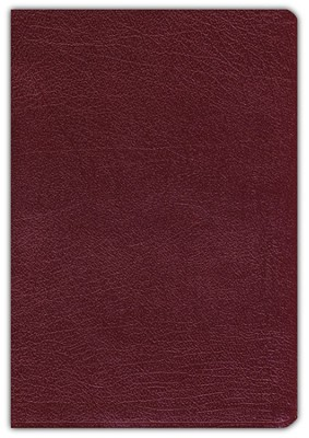 NIV Revised Quest Study Bible Bonded Leather, Burgundy 1984  -     By: Bible