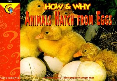 How & Why Animals Hatch From Eggs Grades 1-3   -     By: Elaine Pascoe