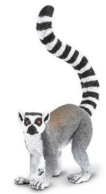 Wild Safari Jungle: Lemur   -