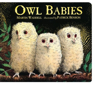 Owl Babies   -     By: Martin Waddell