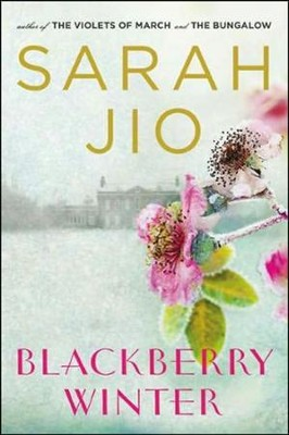 Blackberry Winter: A Novel   -     By: Sarah Joi