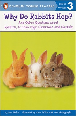 Why Do Rabbits Hop?   -     By: Joan Holub     Illustrated By: Anna DiVito