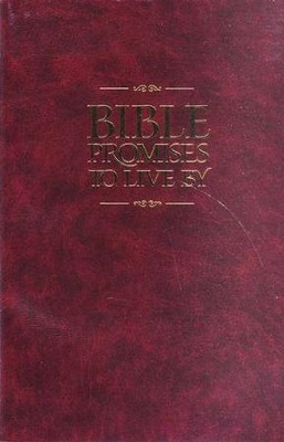 Bible Promises to Live By - NLT Edition  -     By: Amy E. Mason, Ronald A. Beers
