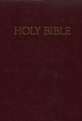 NRSV Children's Bible - Deluxe Gift Edition, Imitation leather, burgundy  -
