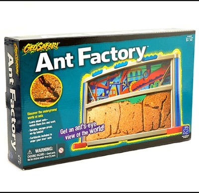 GeoSafari Ant Factory    -