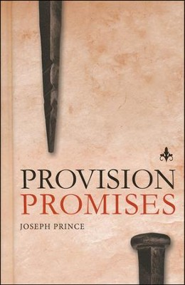 Provision Promises  -     By: Joseph Prince