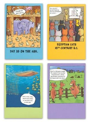 Bible Tales Birthday Cards, Box of 12  -