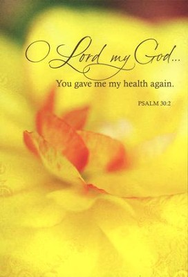 Oh Lord My God Get Well Cards, Box of 12  -