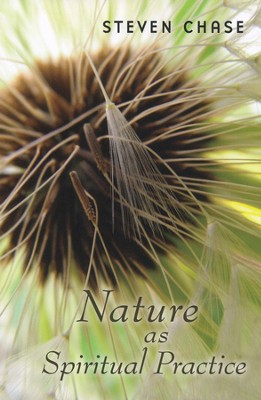 Nature As Spiritual Practice   -     By: Steven Chase