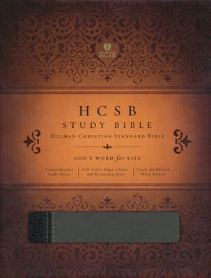 HCSB Study Bible, Black & Gray Simulated Leather - Slightly Imperfect  -