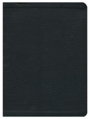 HCSB Study Bible, Black Genuine Leather - Slightly Imperfect  -