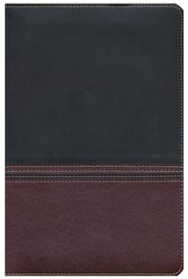 NIV Rainbow Study Bible, Brown and Chestnut LeatherTouch  -