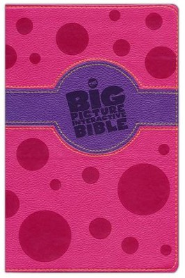 HCSB Big Picture Interactive Bible: Connecting Christ Throughout God's Story, Pink and Purple Leathertouch  -