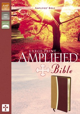 Amplified Bible, Large Print, Italian Duo-Tone, Camel/Burgundy  -