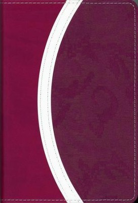 NIV Thinline Bible, Compact, Italian Duo-Tone,   Razzleberry/Plum  -