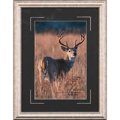 He Makes My Feet Like Feet of Deer Framed Print  -