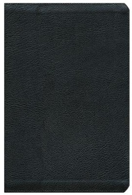 NIV Thinline Zippered Collection Bible, Large Print, Black  -