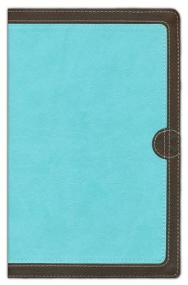 NIV Thinline Bible, Italian Duo-Tone, Chocolate/Turquoise  -