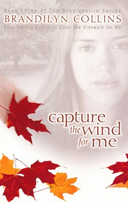 Capture the Wind for Me, Bradleyville Series #3   -     By: Brandilyn Collins