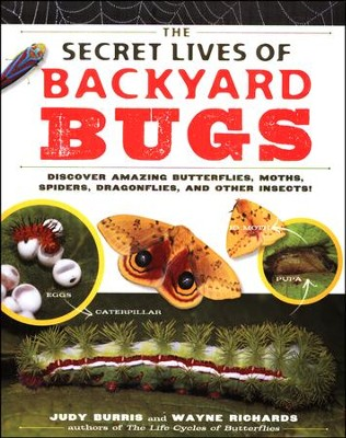 The Secret Lives of Backyard Bugs   -     By: Judy Burris, Wayne Richards
