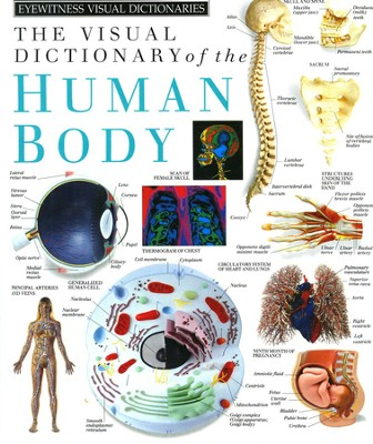 Human Body Visual Dictionary   -